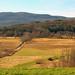 Vermont Farmland