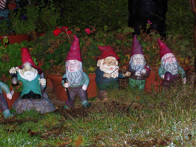 five of seven dwarves a group of garden gnomes stand at th flickr