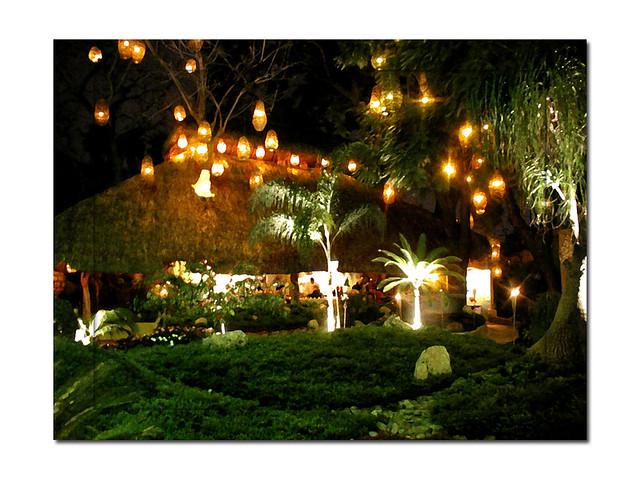 Jardin con luces en santo coyote una foto m s de los for Jardines pequenos con luces