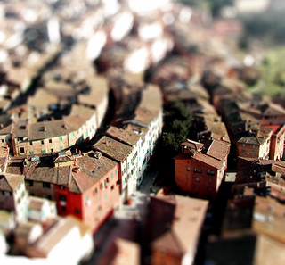 roofs from above | by windypizza