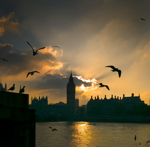 Westminster | by MSH*
