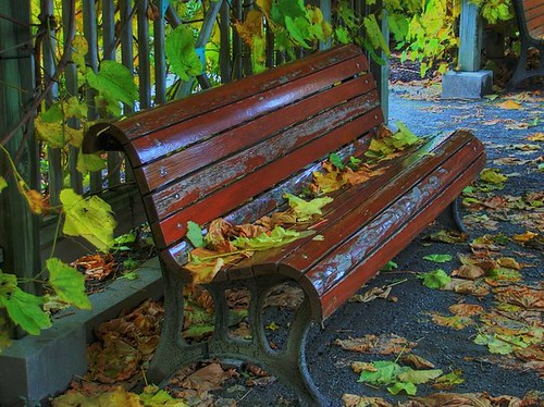 Shelter bench! | by judo_dad1953