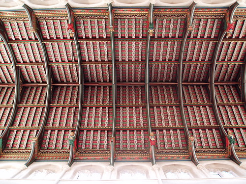 The cathedral ceiling | by paul cripps