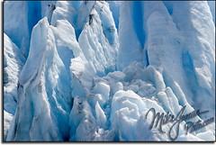 Ice 5955