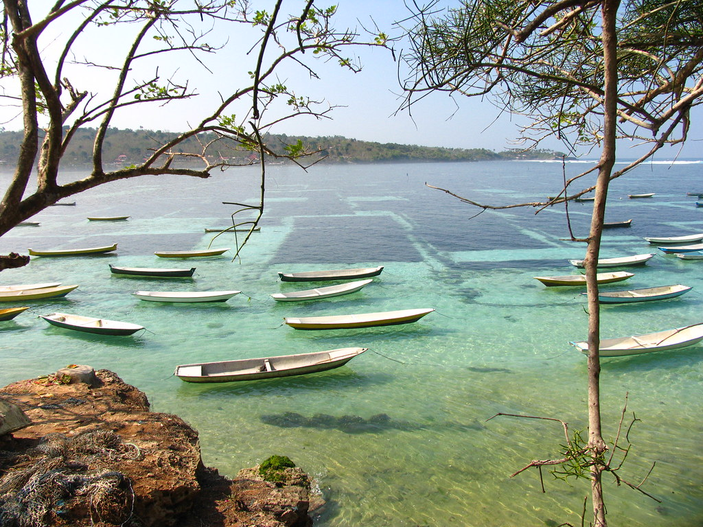 bali - seaweed farm | It is safe to say that the economy