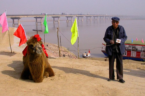 Camel of the Yellow River | by eba317