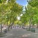 St Tropez - Place des Lices