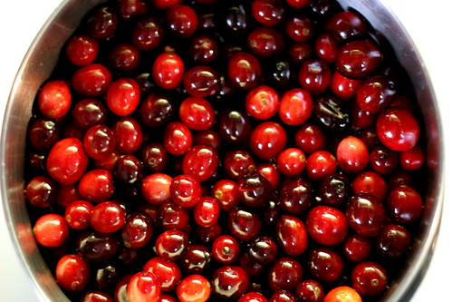 Cranberry | by Half Chinese