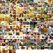 100 days of Flickr