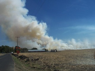 wheat field fire outside of Walla Walla | by ame nielsen