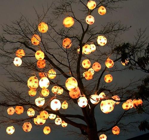 Lantern Tree Lanterns Decorate A Tree During The Lantern