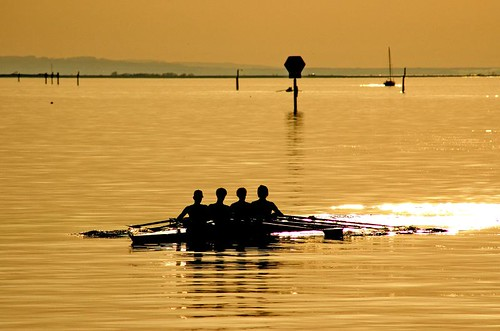 golden rowing | by dolcedo