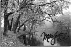 Spring Lake NJ18B