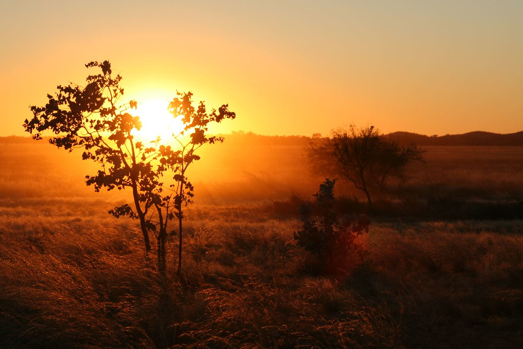Sunrise in the Oz Outback   Rob Chandler   Flickr