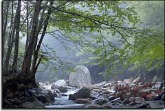 Vermont stream E63