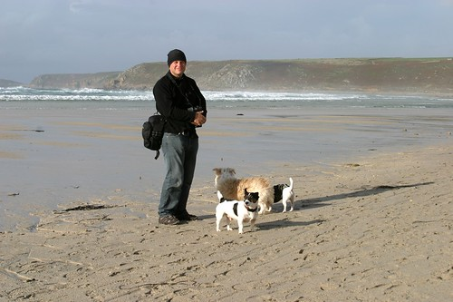 Dog Beaches Cornwall Winter Only