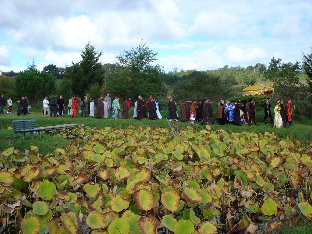 285437117 a17242d6de b - White Wedding