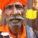 100% Gujarati