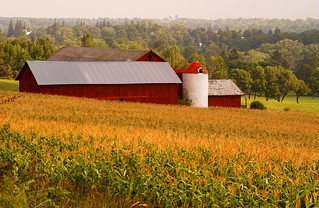 Country Barn scene | by Skaneateles Suites