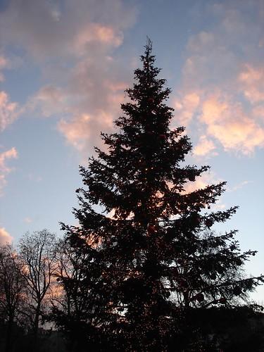 Sapin De Noel Decoration Contemporaine
