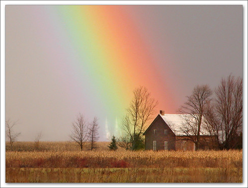My Neighbor Under Rainbow | by Renald Bourque