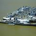 USS Iowa and Mothball fleet, Suisun Bay, California, 2005
