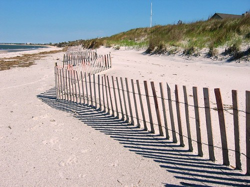 Beach Fencing | Dune fencing on Lewes Beach. This is ...