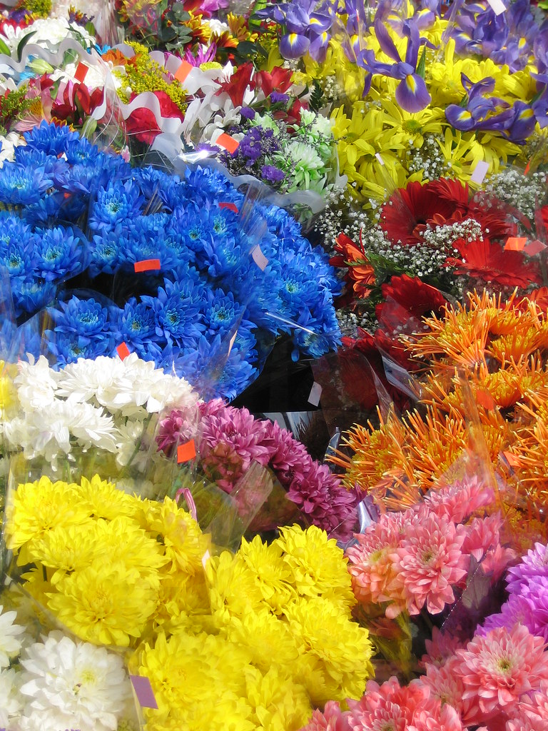 Spring Flowers For Sale Along Bloor Street West Near Runny Flickr
