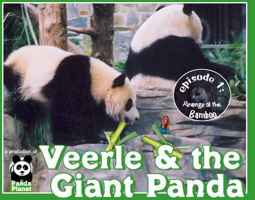 """Veerle and the Giant Panda"" 