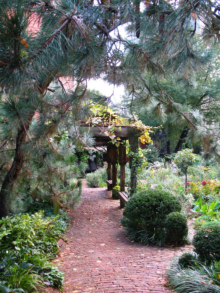 ... 6BC Botanical Garden   By Tiny Banquet Committee