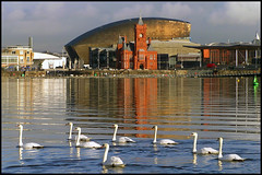 cardiff bay | by Capt' Gorgeous