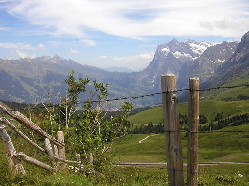 how to get to grindelwald from zurich