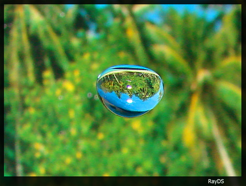 water droplet photography reflected - photo #7