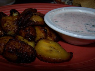 Starliner Diner Plantains Appetizer | by swampkitty