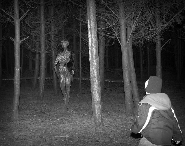in the forest at night we found a warrior made of m flickr