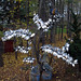Stainless Steel Tree/Ceramic Mountain w/ Ceramic Bird.