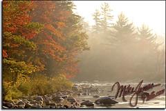 Foggy River 9704