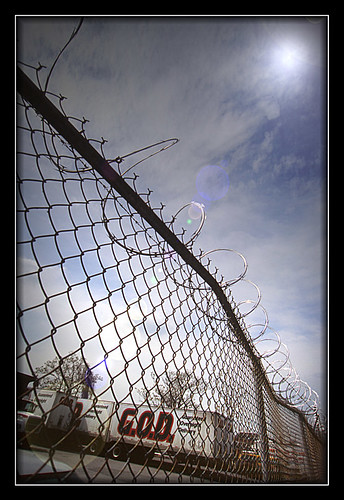 Barbed Wire 2 LSLF 1 print | by chriscreekos