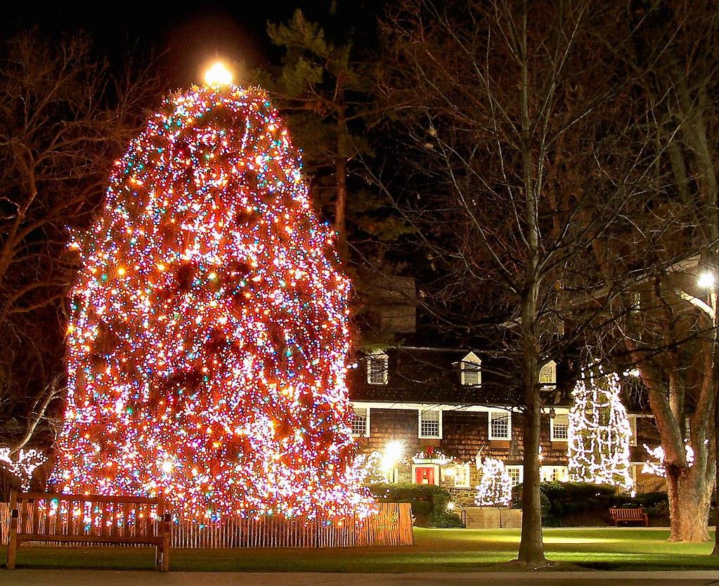 Holiday Season Date Ideas