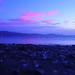 dusk on a beach