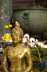 buddha with lotus flowers | by emro_84
