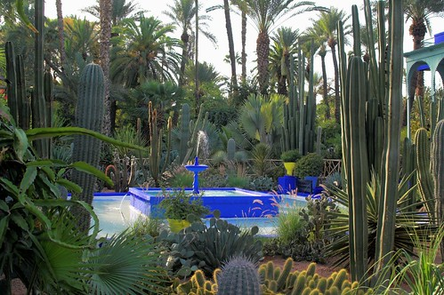 Jardin majorelle marrakech the jardin majorelle once for Jardin marrakech