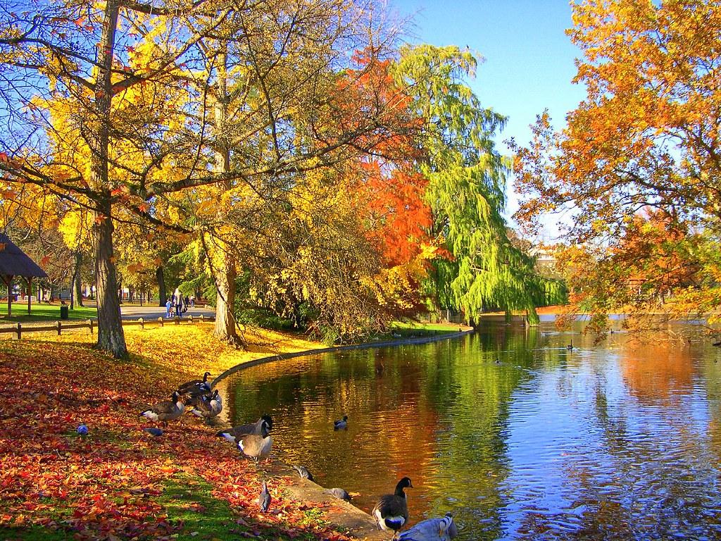 l'automne au parc bordelais ! | philippejack | Flickr