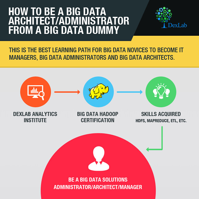 Dummies guide to being a Data Architect / Administrator