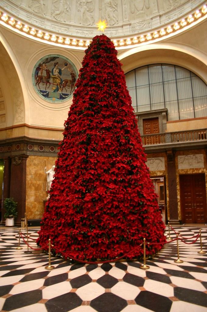 ein besonderer weihnachtsbaum ein baum komplett aus. Black Bedroom Furniture Sets. Home Design Ideas
