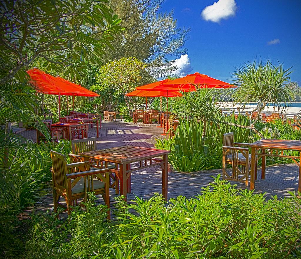 Terrace Beach Resort Hummingbird