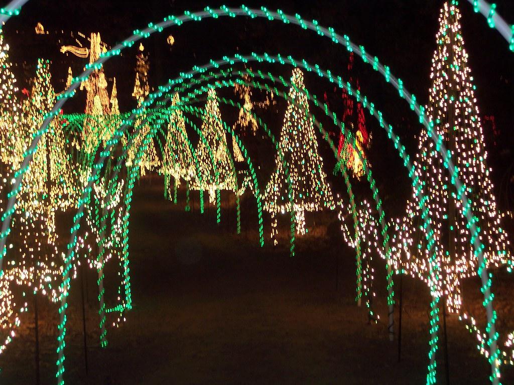 christmas pathway garvan woodland gardens by dsimmons2006 - Garvan Gardens Christmas Lights