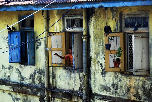 Slum Dwellers Essay Format - image 11