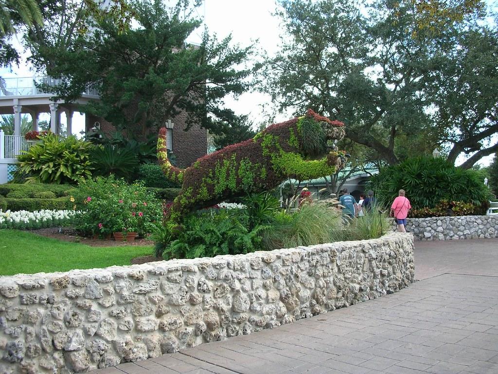 busch gardens tiger topiary evan sanders flickr. Black Bedroom Furniture Sets. Home Design Ideas