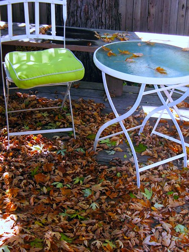 Leaves On The Side Porch | by hubs